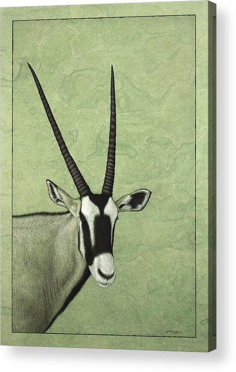 Gemsbok Acrylic Print featuring the painting Gemsbok by James W Johnson
