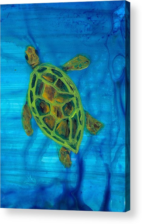 Turtle Acrylic Print featuring the painting Going Up For Air by Wanda Pepin