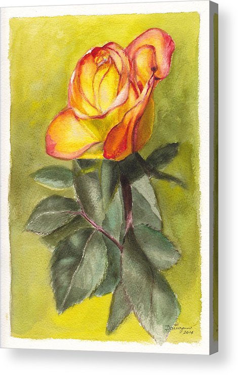 Flower Acrylic Print featuring the painting Golden Rose by Dai Wynn