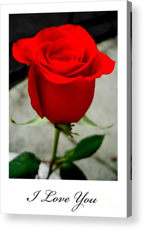 I Love You Acrylic Print featuring the photograph I Love You by Nina Ficur Feenan