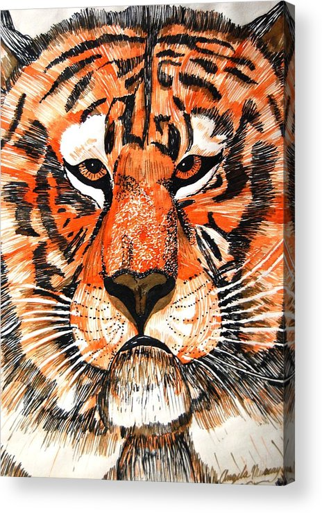 Tiger Acrylic Print featuring the photograph Tiger by Angela Murray