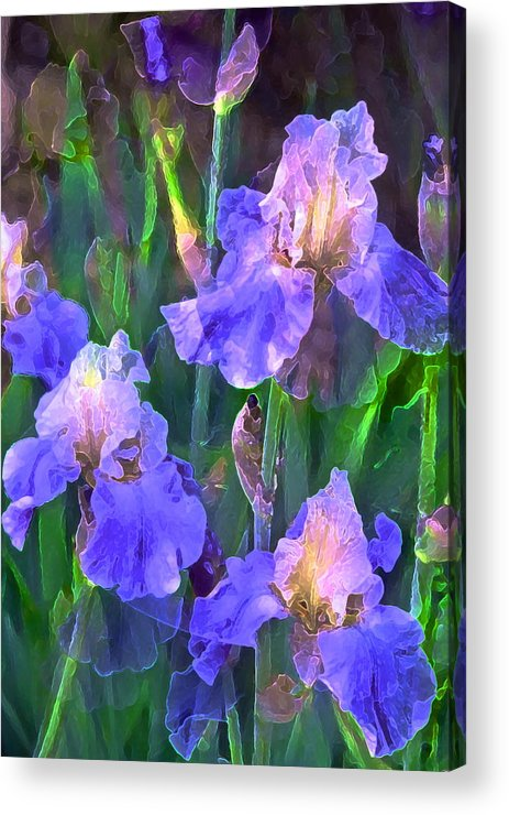 Floral Acrylic Print featuring the photograph Iris 51 by Pamela Cooper