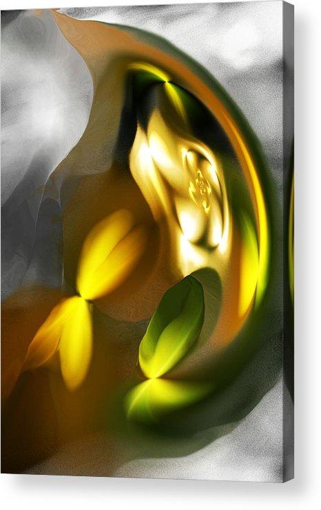 Fine Art Acrylic Print featuring the digital art Seed by David Lane