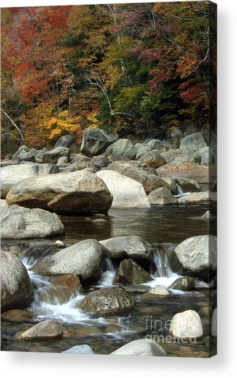 New Hampshire Acrylic Print featuring the photograph Streamside Color by Sandra Bronstein