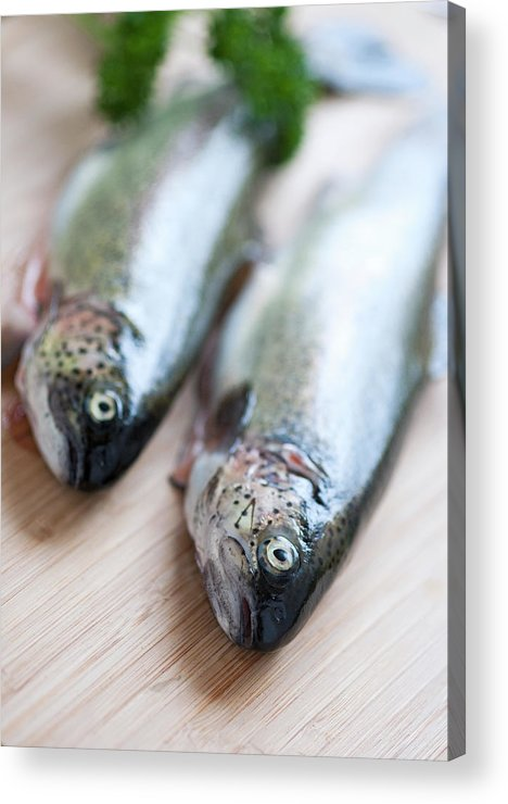 Vertical Acrylic Print featuring the photograph Trouts by Carlo A