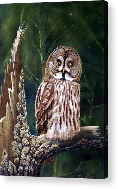 Wildlife Acrylic Print featuring the painting Deep In The Woods by Frank Wilson