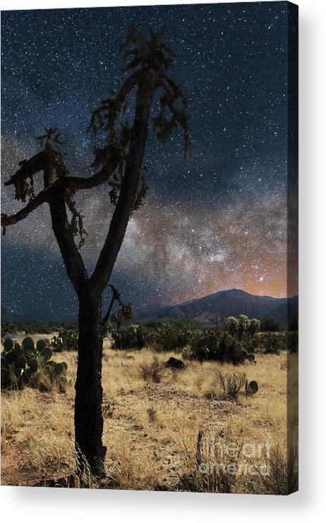 Milky Way Acrylic Print featuring the photograph Milky Way 3 by Larry White