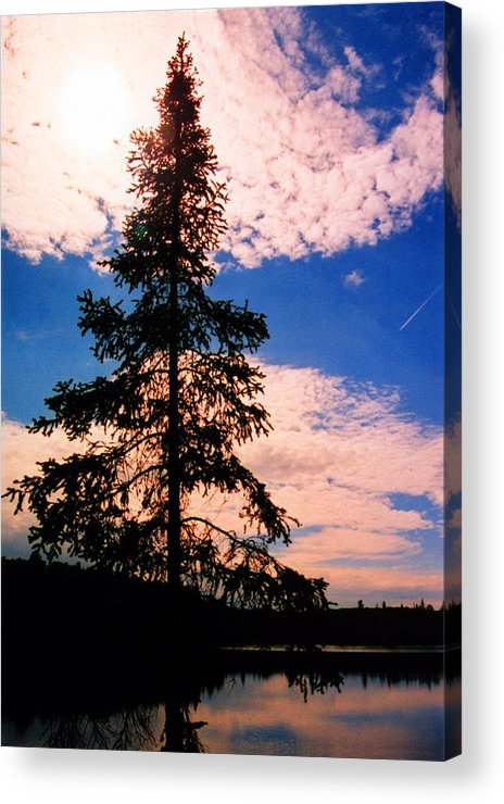 Landscape Acrylic Print featuring the photograph Pine Tree By Peck Lake 4 by Lyle Crump