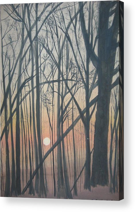 Trees Acrylic Print featuring the painting The Pines From The Treehouse by Sheryl Sutherland