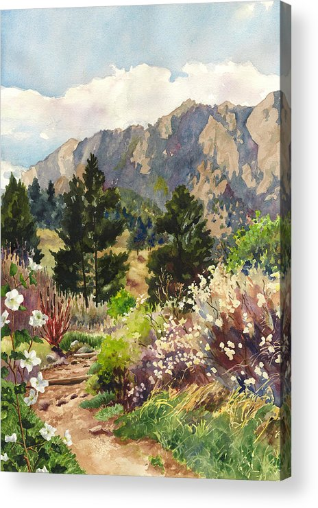 Colorado Painting Acrylic Print featuring the painting April Hike by Anne Gifford