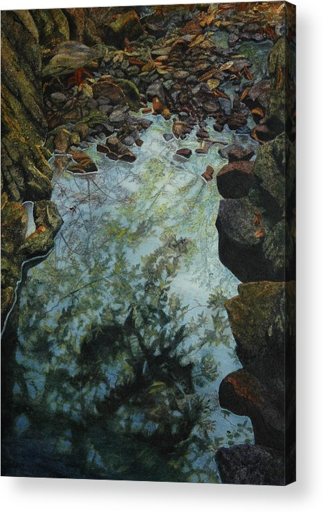 Creek Acrylic Print featuring the painting Canyon Study by Craig Gallaway
