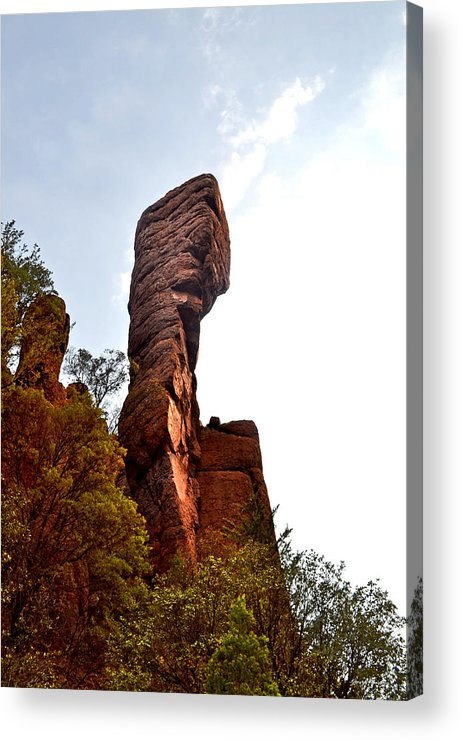 Chiricahua National Park Acrylic Print featuring the photograph Chiricahua Mountaintop 006 by George Bostian