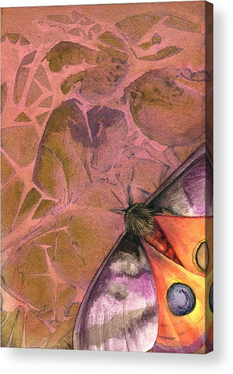 Moths Acrylic Print featuring the painting Fantasmoth 2 by Mindy Lighthipe