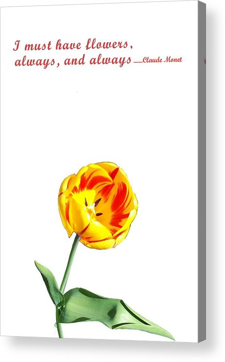 Monet Acrylic Print featuring the photograph Flower by Kunchar Asthula