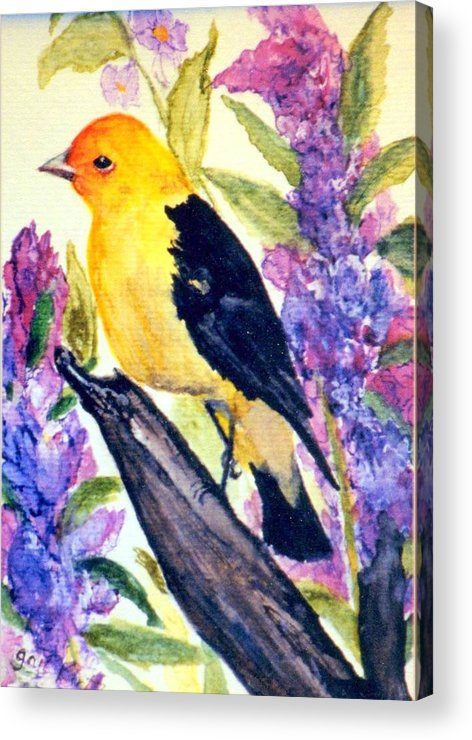 Birds Acrylic Print featuring the painting Goldfinch by Gail Kirtz