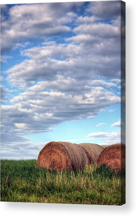 Hay Acrylic Print featuring the photograph Hay It's Art by JC Findley