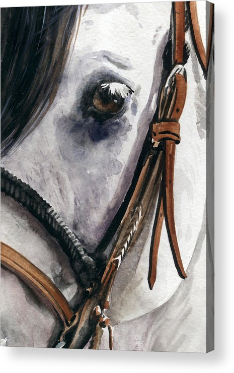 Cowboy Acrylic Print featuring the painting Horse Head by Nadi Spencer