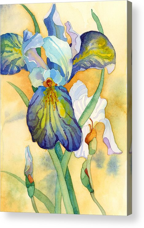 Watercolor Acrylic Print featuring the painting Iris by Casey Shannon
