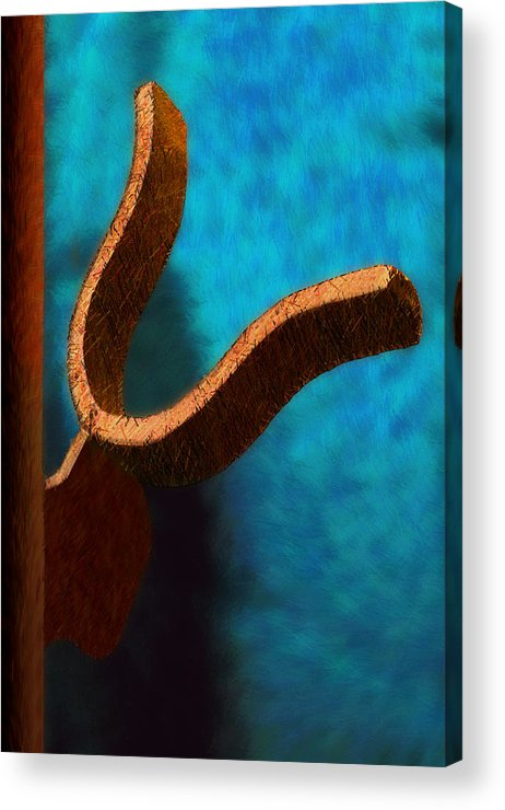 Photography Acrylic Print featuring the photograph Latch by Paul Wear