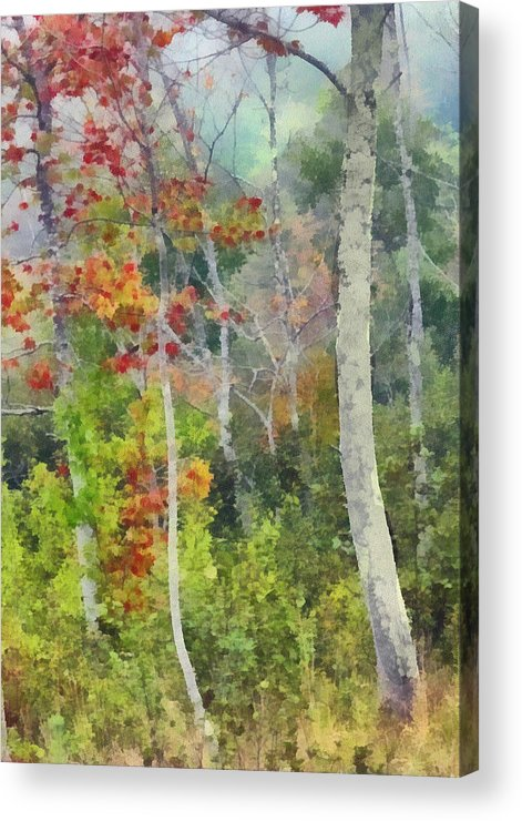 Maine Acrylic Print featuring the photograph Maine Fall by Judy Coggin
