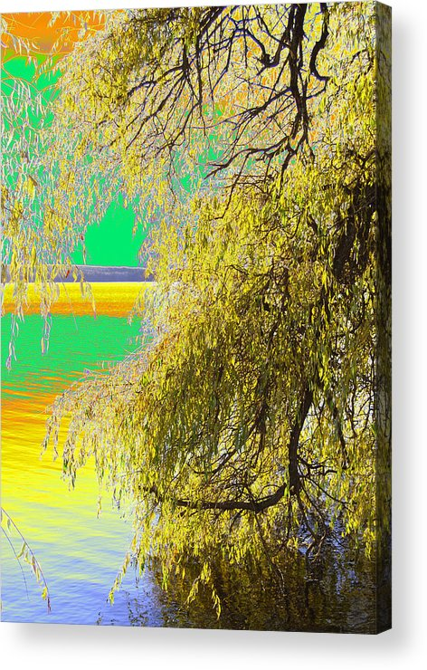 Photograph Acrylic Print featuring the photograph My Home Town-autunno1 by Robert Litewka