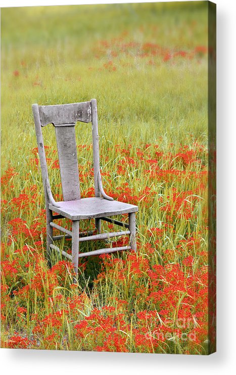 Chair Acrylic Print featuring the photograph Old Chair In Wildflowers by Jill Battaglia