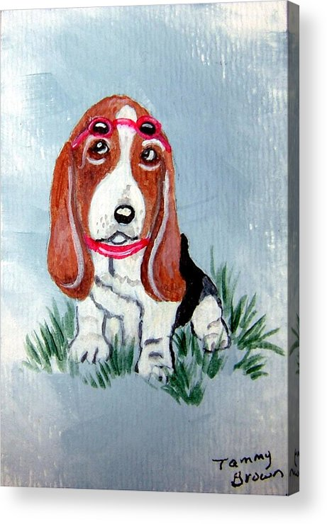 Basset Hound Acrylic Print featuring the painting One Cool Basset Hound by Tammy Brown