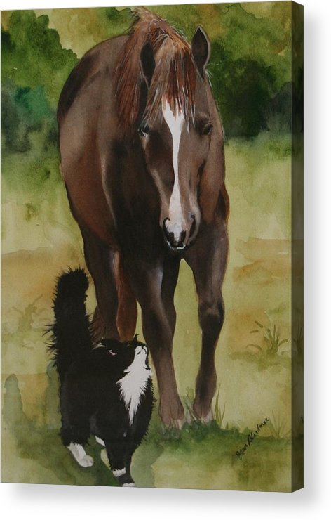 Horse Acrylic Print featuring the painting Oscar And Friend by Jean Blackmer