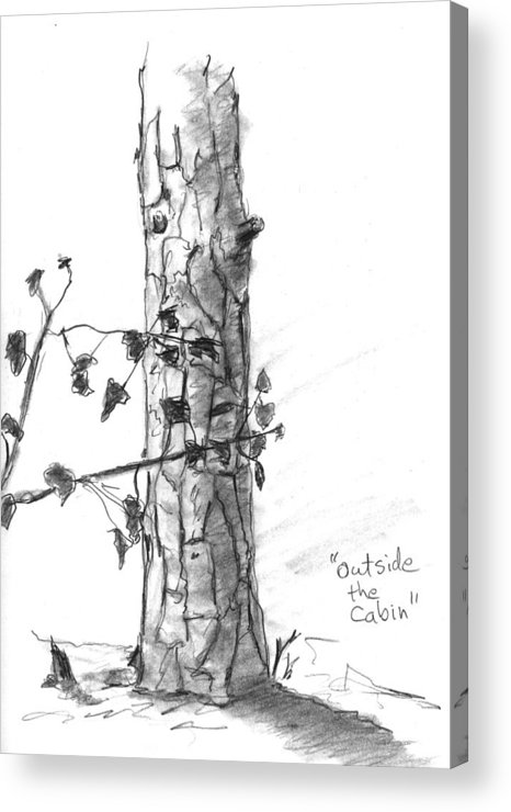 Tree Acrylic Print featuring the drawing Outside The Cabin by Kevin Callahan