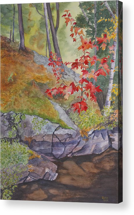 Red Acrylic Print featuring the painting Red Maple Leaves by Debbie Homewood