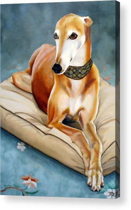 Greyhound Acrylic Print featuring the painting Rescued Greyhound by Sandra Chase