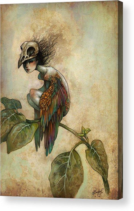 Bird Acrylic Print featuring the painting Soul Of A Bird by Caroline Jamhour