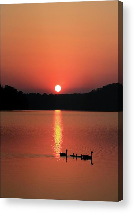 Lake Acrylic Print featuring the photograph Sunset Reflections by Dave Alexander