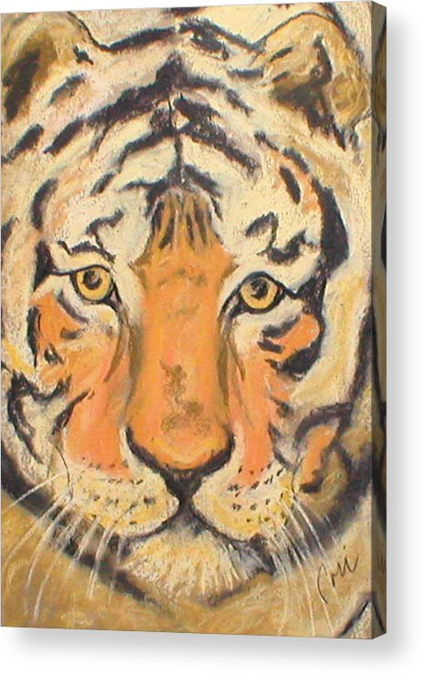 Pastel Acrylic Print featuring the drawing The Amber Stare by Cori Solomon