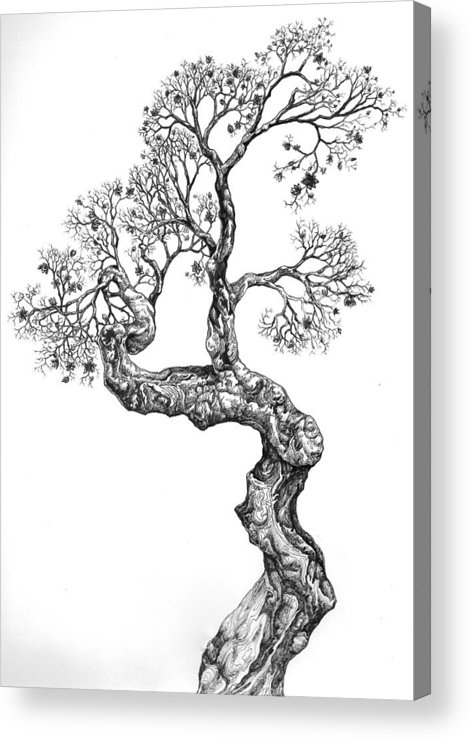 Tree Acrylic Print featuring the digital art Tree 14 by Brian Kirchner