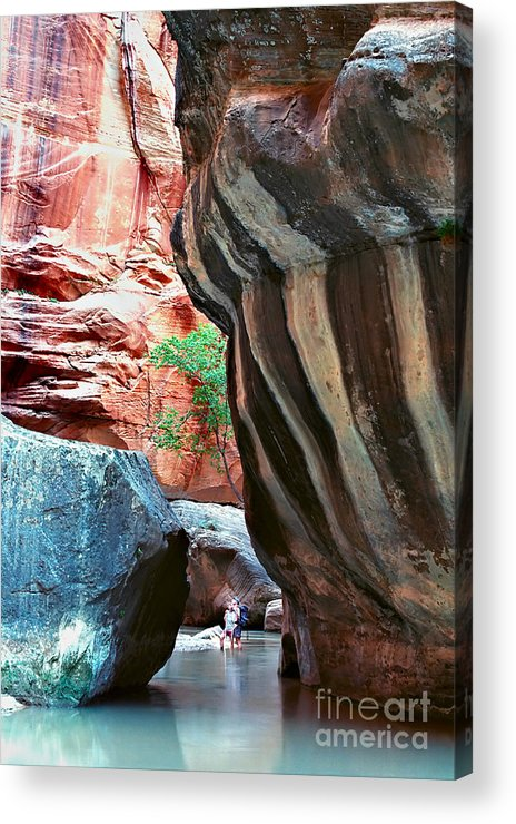 Landscape Acrylic Print featuring the photograph Virgin River Narrows by Carl Jackson