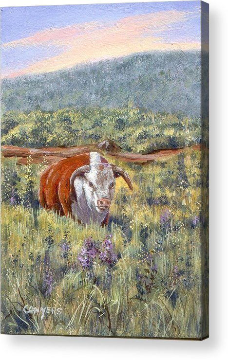 Hereford Bull Acrylic Print featuring the painting White Face Bull by Peggy Conyers