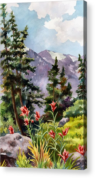 Colorado Art Acrylic Print featuring the painting Indian Paintbrush by Anne Gifford