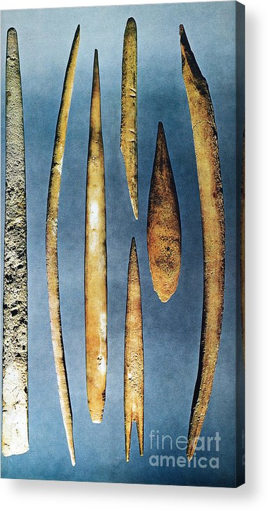 10000 Acrylic Print featuring the photograph Paleolithic Spears by Granger