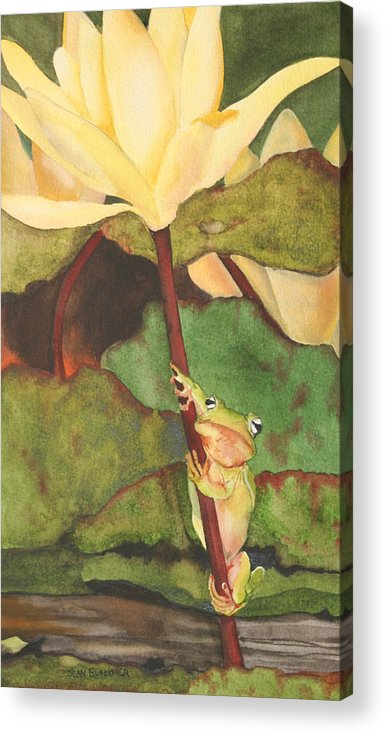 Frog Acrylic Print featuring the painting Peeping Tom by Jean Blackmer