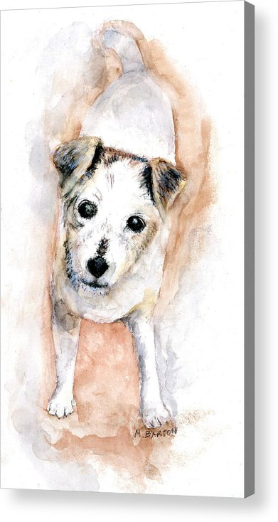 Dog Acrylic Print featuring the painting Portrait Of Abby - Jack Russell Terrier by Marilyn Barton
