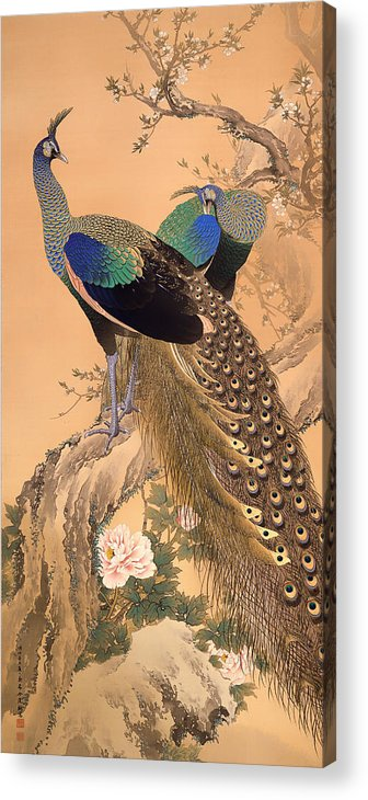 Painting Acrylic Print featuring the painting A Pair Of Peacocks In Spring by Mountain Dreams