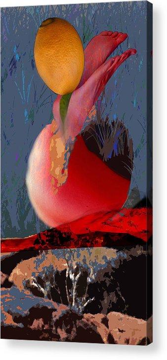 Surrealism Photography Acrylic Print featuring the photograph Orange Feet by Alon Shepherd