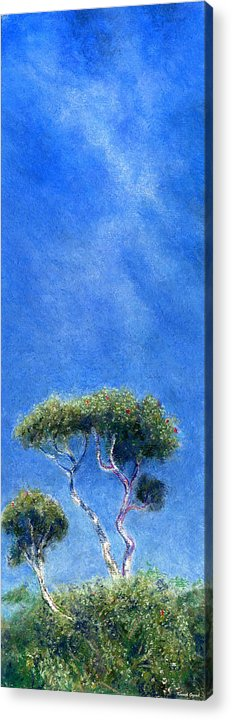Rainbow Colors Pastel Acrylic Print featuring the painting Kokee Trees by Kenneth Grzesik