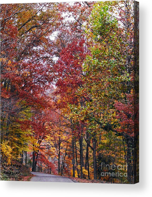 In Focus Acrylic Print featuring the photograph Falling For West Virginia by Katherine Williams