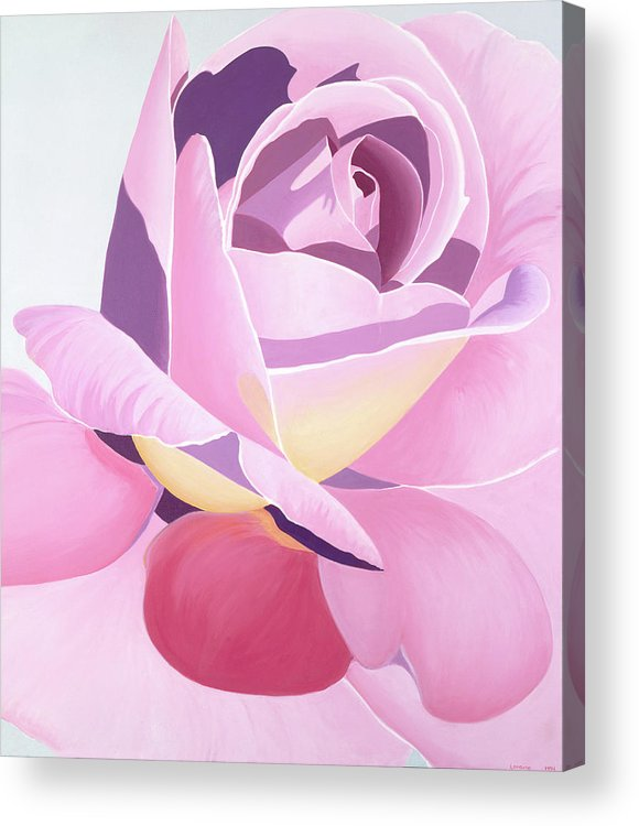 Rose Acrylic Print featuring the painting Untitled by Loraine LeBlanc
