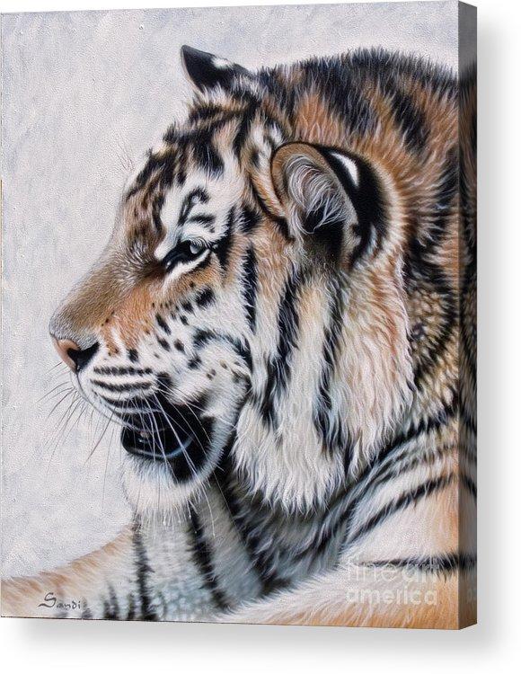 Acrylic Acrylic Print featuring the painting Amur by Sandi Baker
