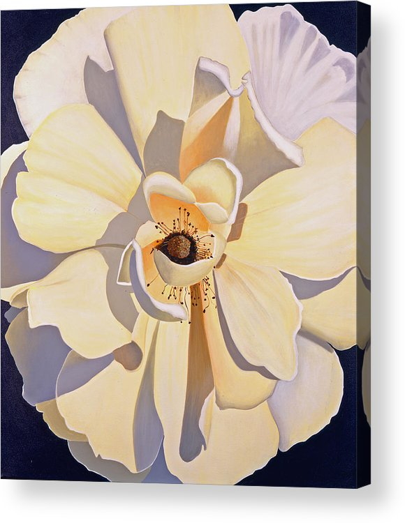 Rose Acrylic Print featuring the painting Front And Center by Loraine LeBlanc