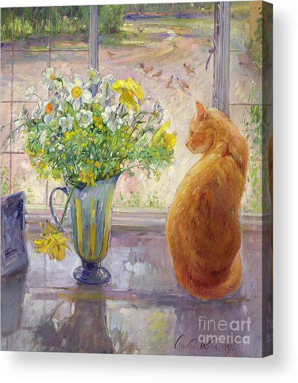 Ginger; Cat; Vase; Narcissi; Chicken; Pheasants Eye; Flower; Flowers ; Window; Open Window; Pheasant Acrylic Print featuring the painting Striped Jug With Spring Flowers by Timothy Easton
