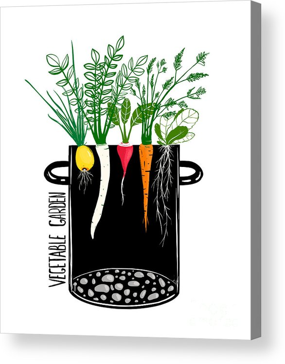 Soup Acrylic Print featuring the digital art Grow Vegetable Garden And Cook Soup by Popmarleo